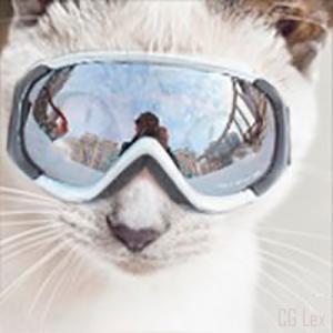 CGLex's Profile Picture