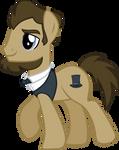 Lincoln Pony
