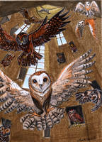 Aviary by Agatha-Macpie