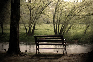 The Bench by K-Boyd-Photography