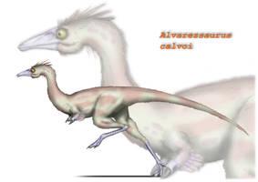 Alvarezsaurus calvoi 2 by maniraptora