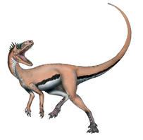 Herreras Lizard by maniraptora