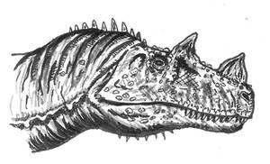 Ceratosaurus 2011
