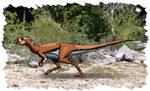 Ornithopoda
