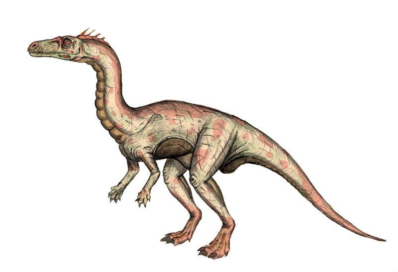 Photoshoped Guaibasaurus by maniraptora
