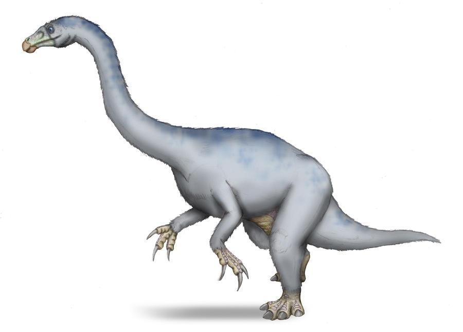 Neimongosaurus yangi by maniraptora