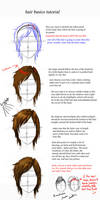 hair basics by endofnonentity