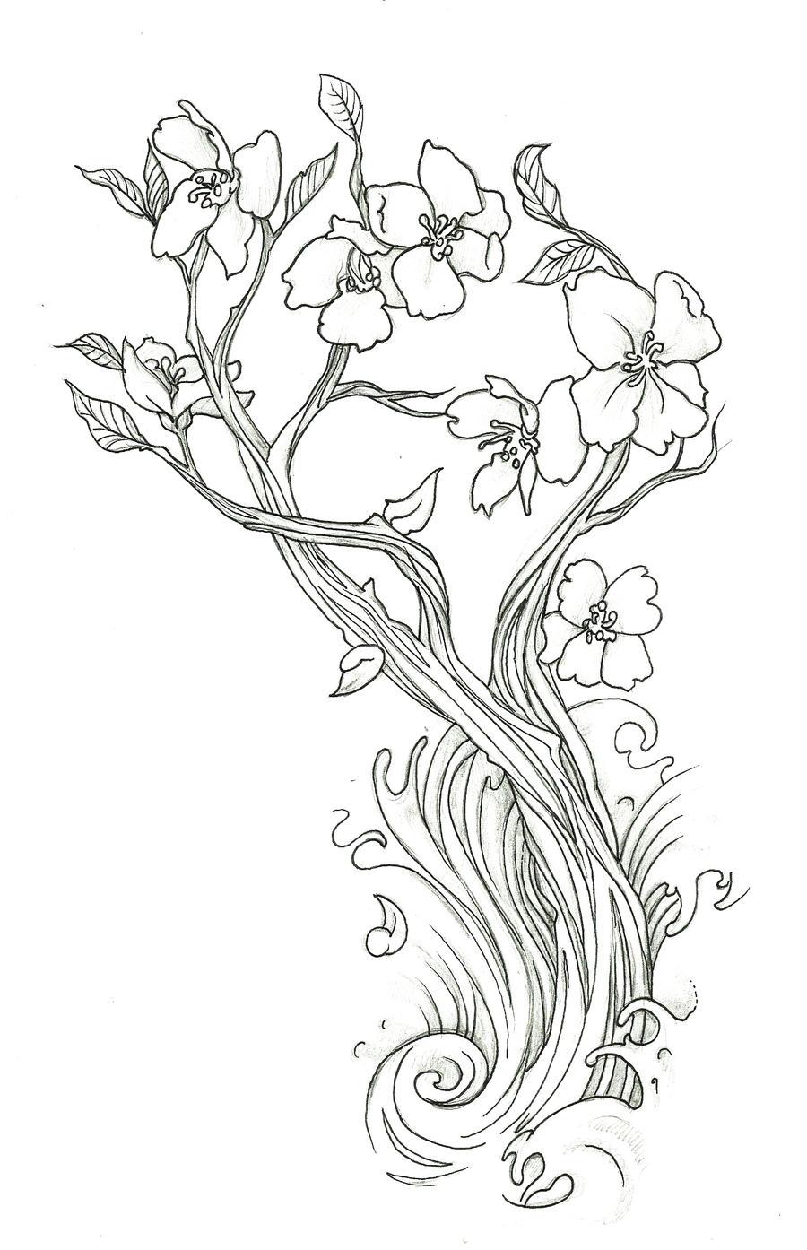 Cherry Blossom by endofnonentity on DeviantArt