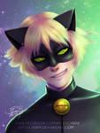 Miraculous Chat Noir