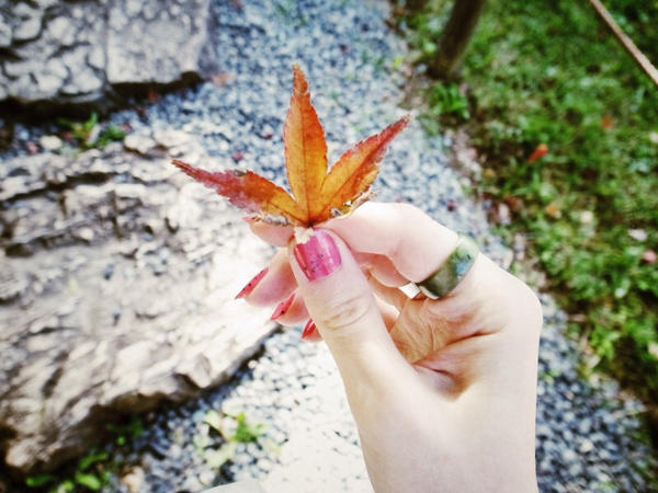 Nagoya autumn by Irchiel