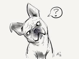 Paper60 - French Bulldog by MatsuRD