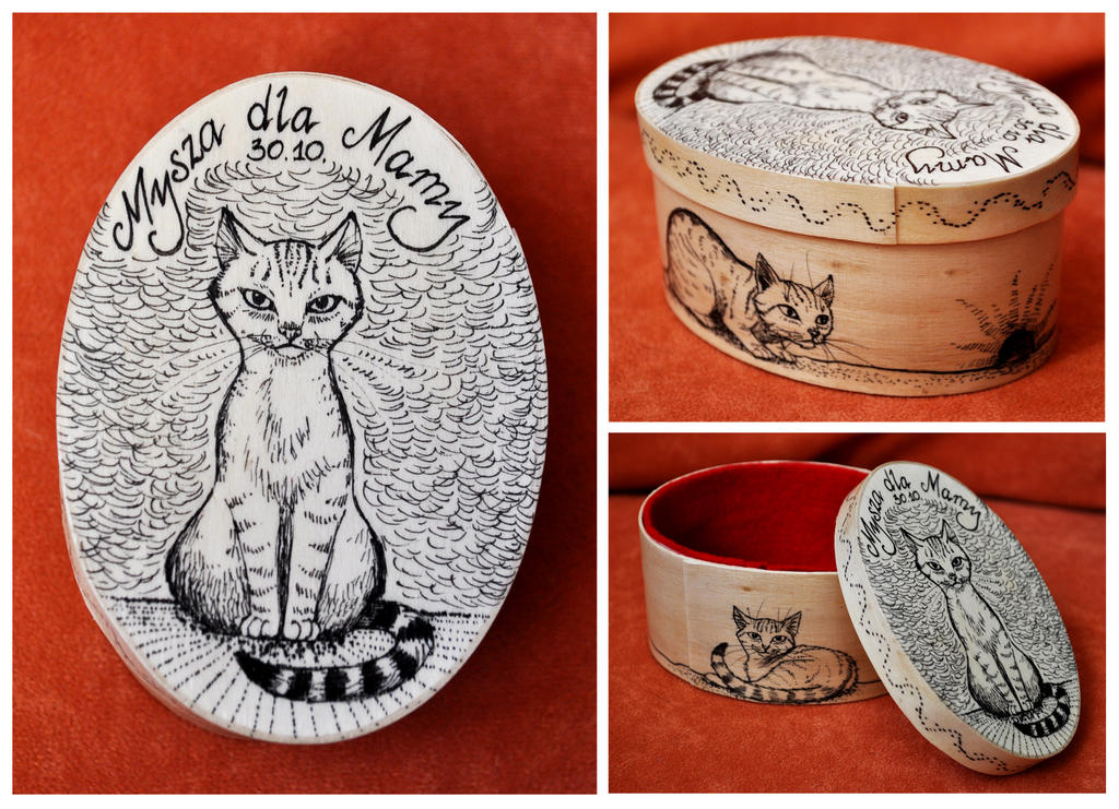 Kitty box by ElaRaczyk