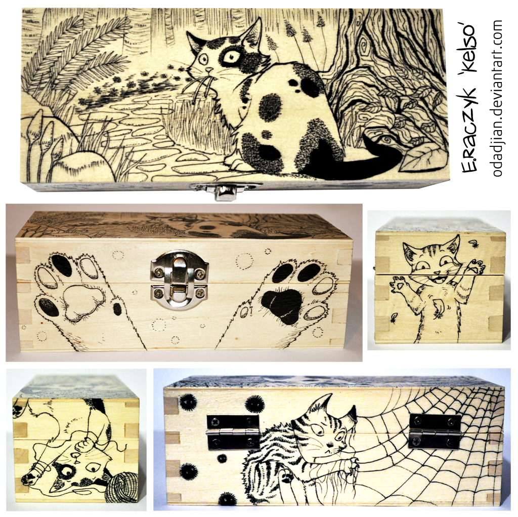 Crazy cats wooden box by ElaRaczyk