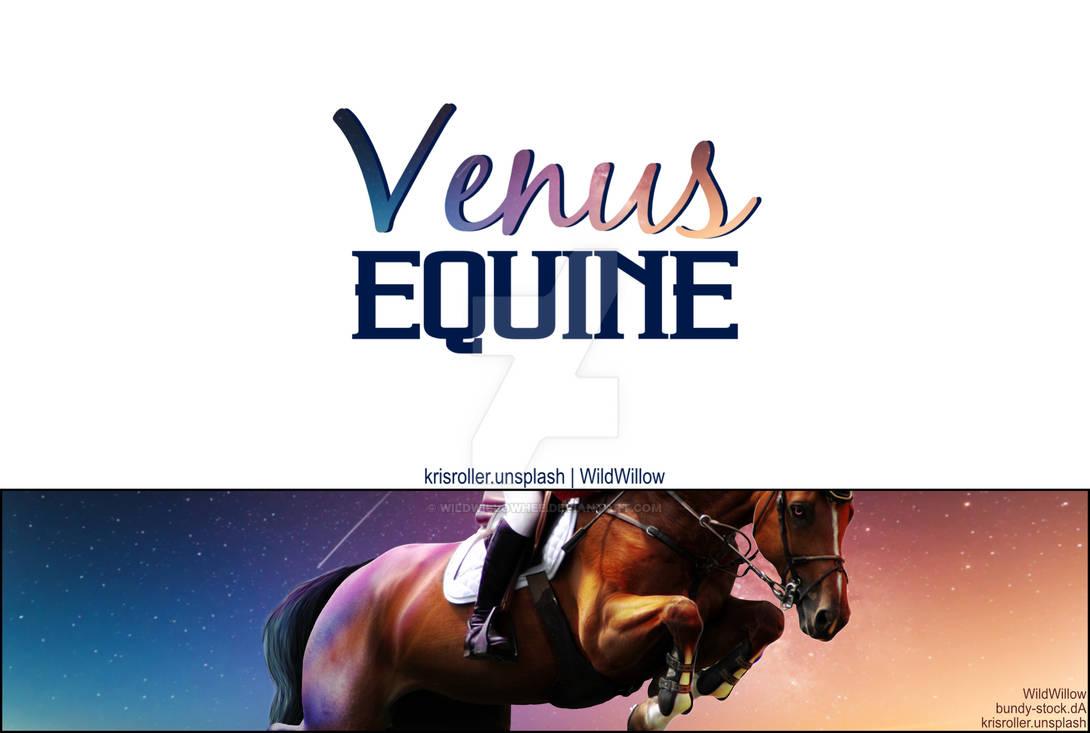 HEE Stable Set - Venus Equine