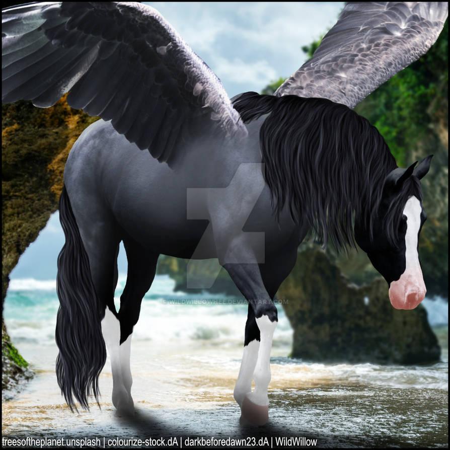 HEE Horse Artwork - Flowering Song