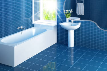 Mr Clean Bathroom 2