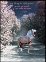 crazier by horsegurljump