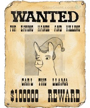 carl is wanted by alecplz