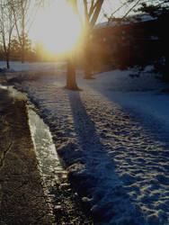 Snowy Sunrise by GaitedSplendor
