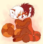 Red Panda Snuggles