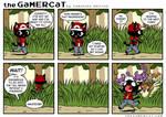 the GaMERCaT - Trainer Basics