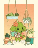 Little Aloe