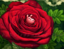 Rosebunny