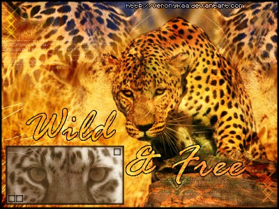 Wild and Free - Leopard Banner by VeroNykaa