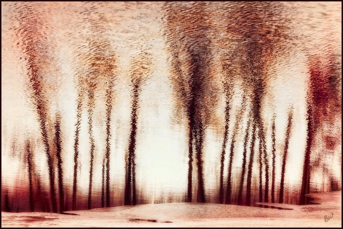 Reflection by kootenayphotos
