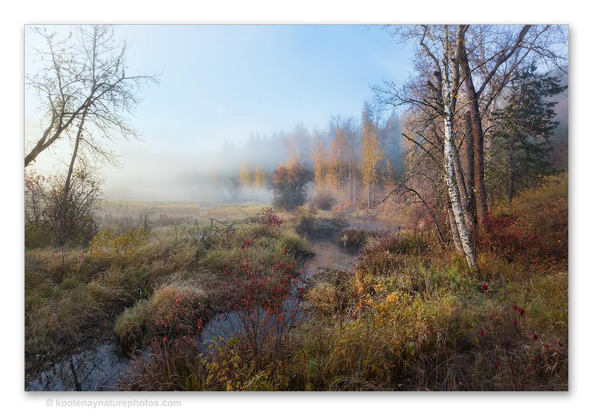 Morning Fog by kootenayphotos