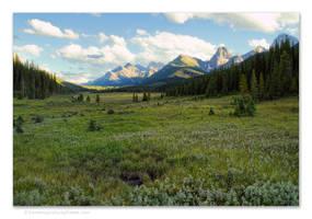 Mountain Meadow by kootenayphotos