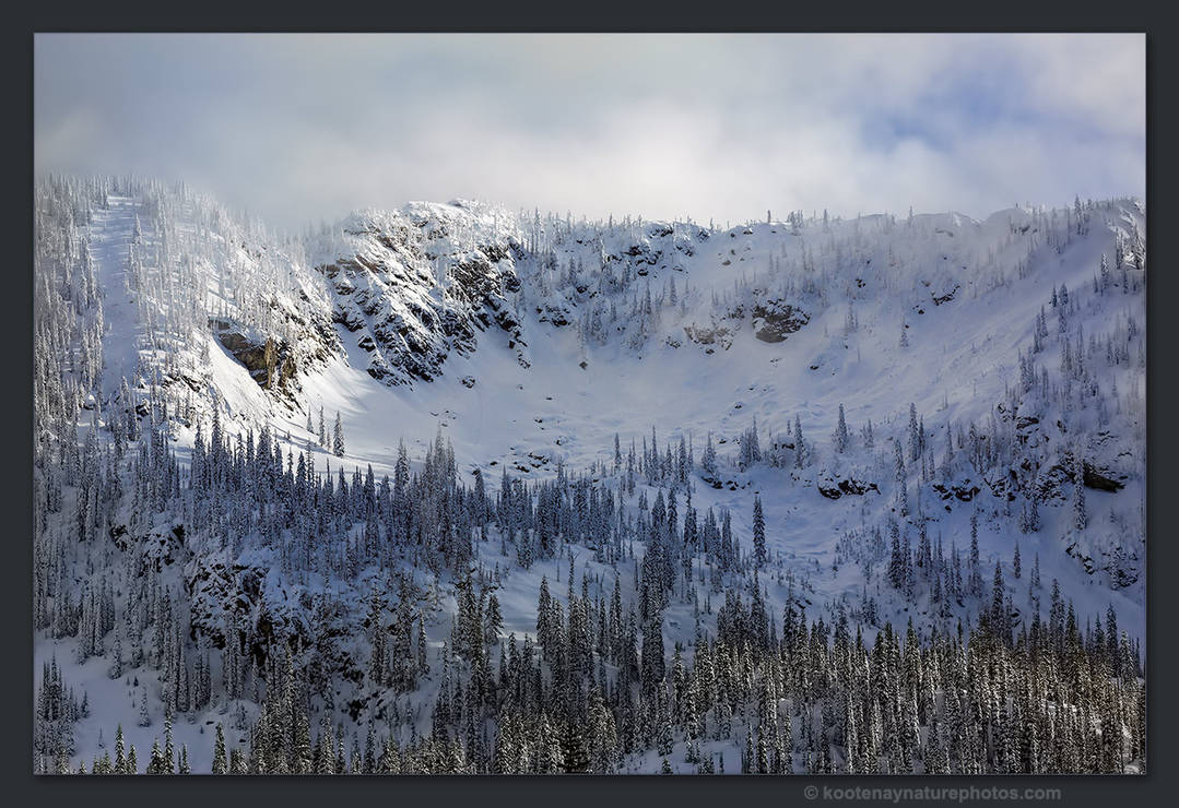 Winter 1 by kootenayphotos