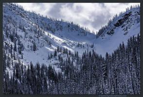Winter 3 by kootenayphotos