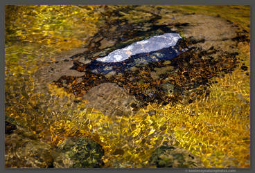 Gold Creek by kootenayphotos