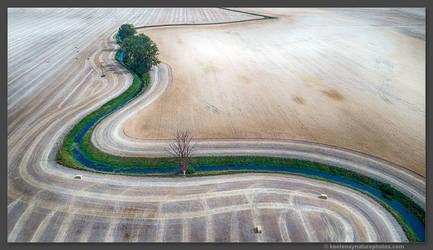Hay Fields 1