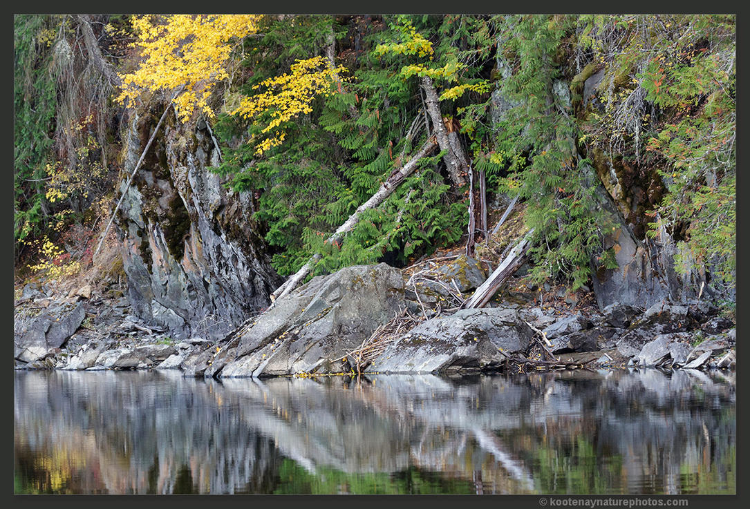 Riverbank Reflections by kootenayphotos
