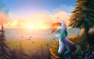 morning sunrise by Atlas-66