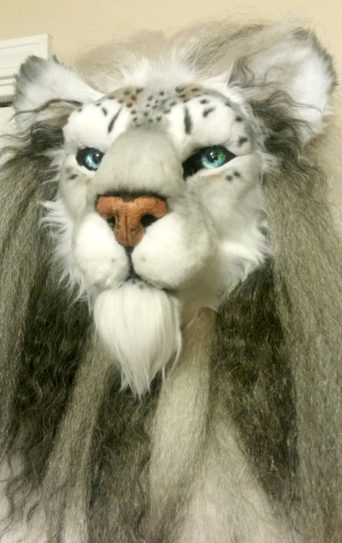Complete HEAD - Barbary Lion/Snow Leopard Hybrid