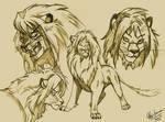 Lion Sketch My Chara Spirit