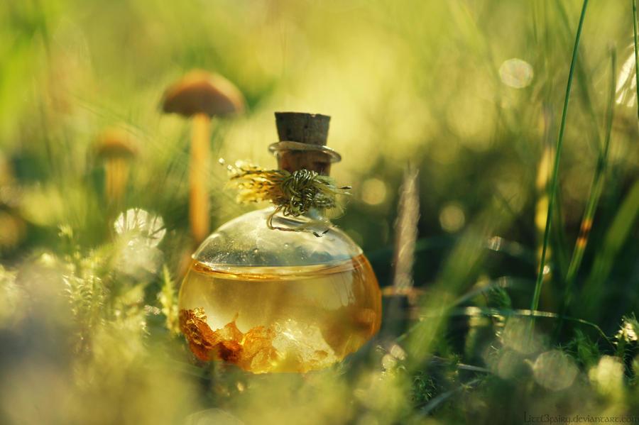 Magical little World... by Samantha-meglioli