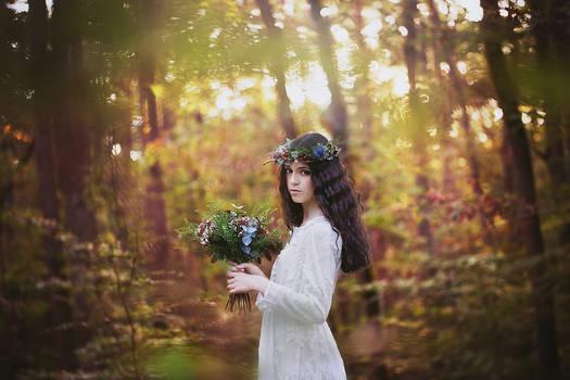 Enchanted Wedding