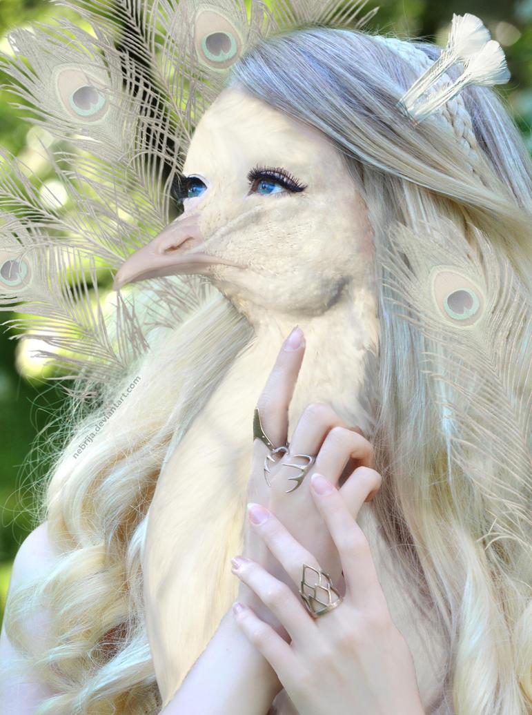 White Peacock (Zoomorph Photomanipulation Contest) by Nebrija