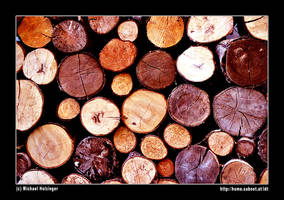 woodstoprt by mailfor