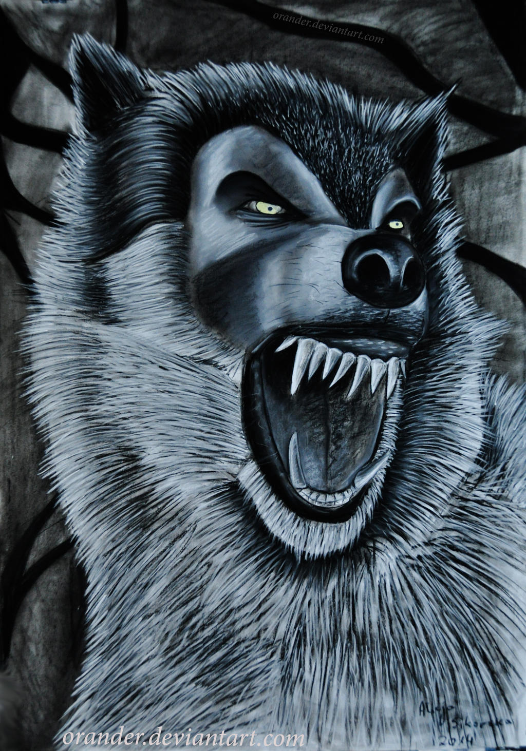 Angry Wolf by Orander on DeviantArt