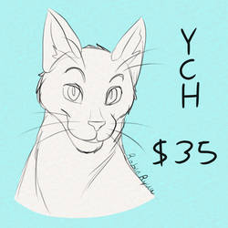Cat Bust YCH - Open