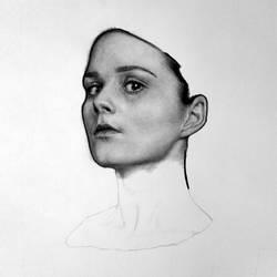 Portrait W.I.P.