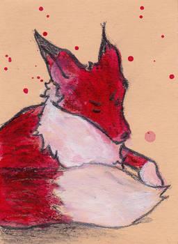 #202 Fox