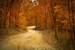 October Road IV