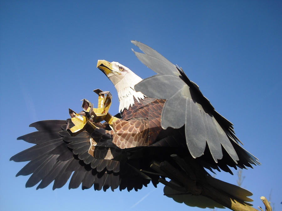 Bald eagle papercraft by TimBauer92
