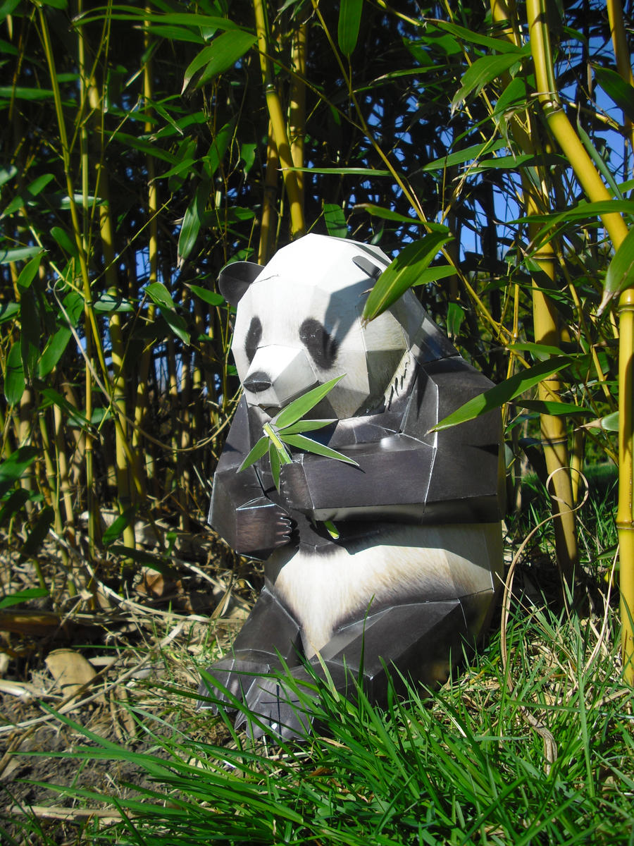 Giant panda papercraft by TimBauer92